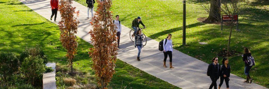 Students following a path to success