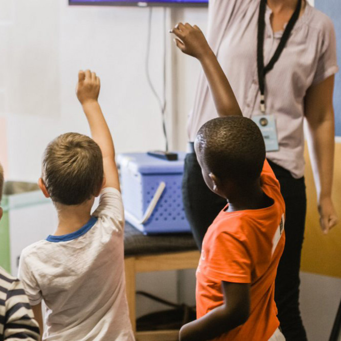 children raise their hands in classroom