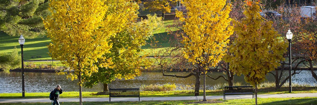 autumn leaves over the campus pond
